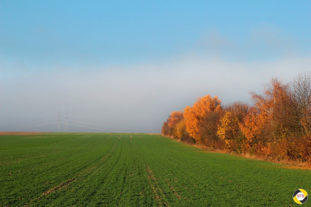 Finsinger Herbst © Hannelore Kiefer