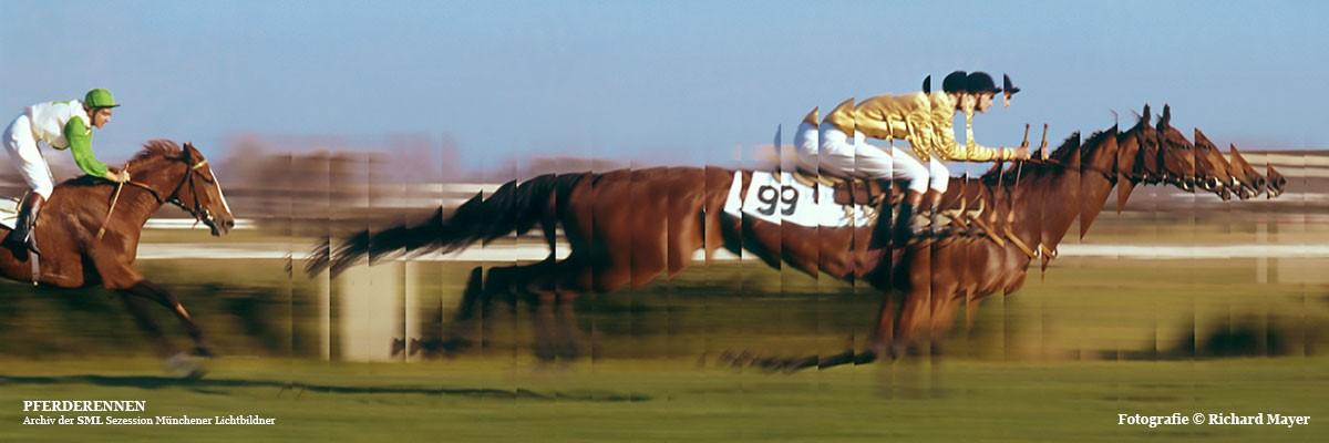SML-Fotoclub-Header-MAYER-Pferderennen