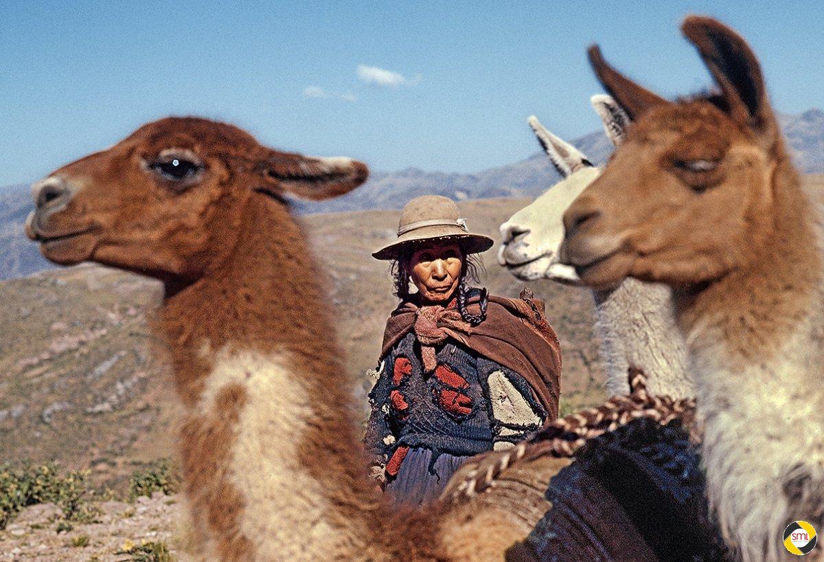 Frau mit Lamas © Richard Mayer - 1. Platz Papierbilder 2015